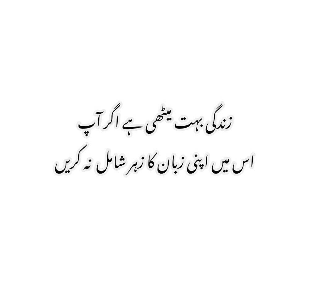 urdu #quotes #urduquotes #اردو  Daily inspiration quotes, Urdu