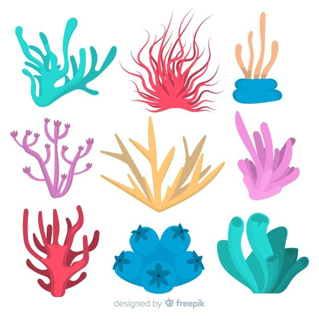 Download Flat Coral Collection for free in 2020 | Vector ...