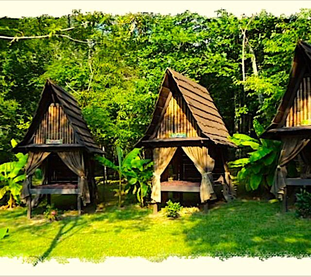 Mountain Light Sanctuary An Enchanted Spiritual Retreat