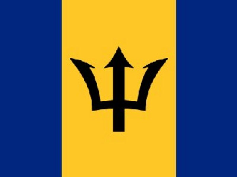 Barbados Flag Dimensions