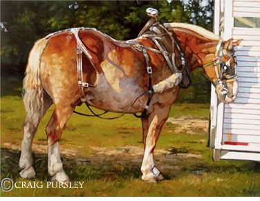 Craig Pursley