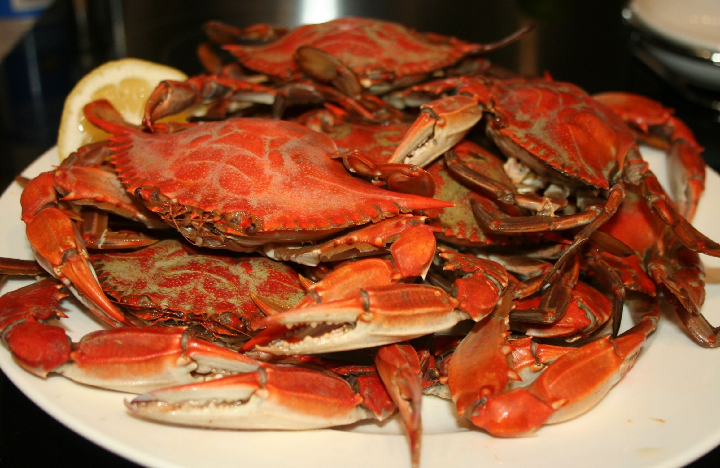 Boiled Blue Crab Seafood Platter Lobster Recipes Oyster Recipes