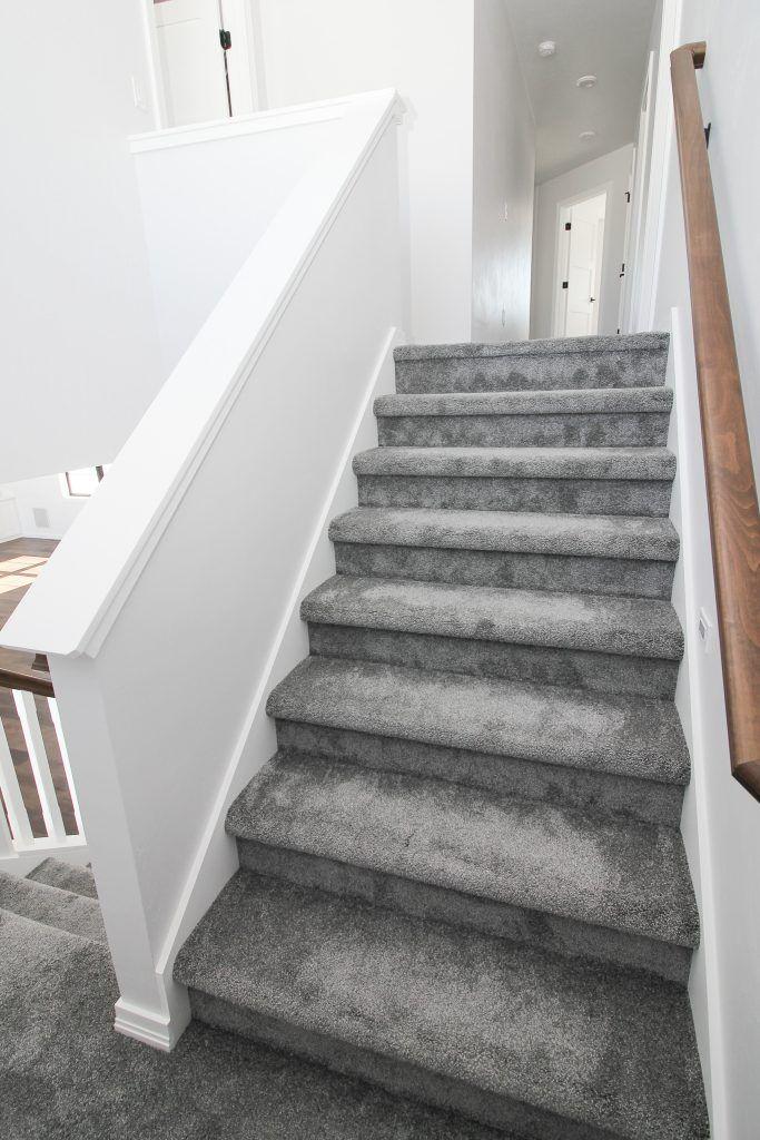 Plush Gray Carpeted Staircase Carpet Staircase Carpet Stairs   Dark Grey Carpet Stairs   Fitted   Black   Grey Vinyl Flooring   Dark Brown   Floor