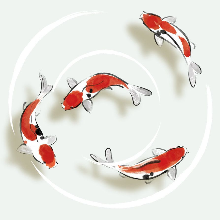 Japanese minimalism motion | Interior design | Pinterest | Fish ...