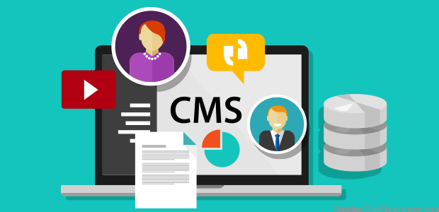 Top 5 Cms Web Design Development Companies Globally Content Management System Content Management Web Development Design