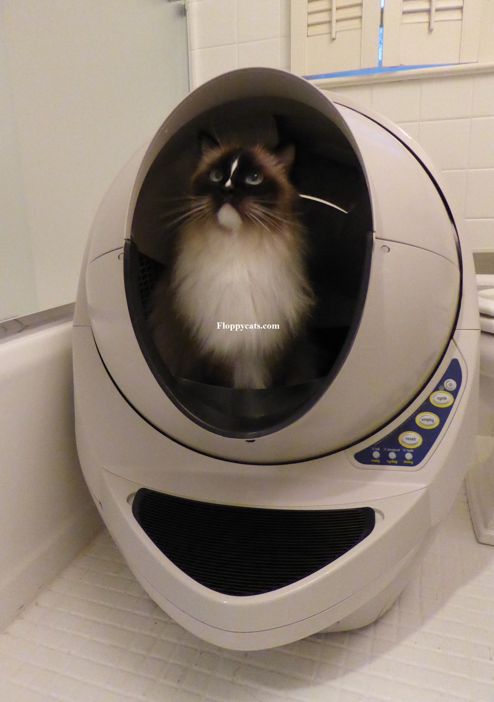 """Your kitty could be """"going"""" in-style too! Win a FREE Litter-Robot Open-Air during the 25 Days of Christmas bit.ly/freelitterrobot #cats #free #gift"""