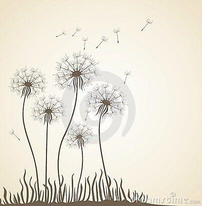 Dente Di Leone Disegno Floreale Scarica Tra Oltre 42 Milioni Di