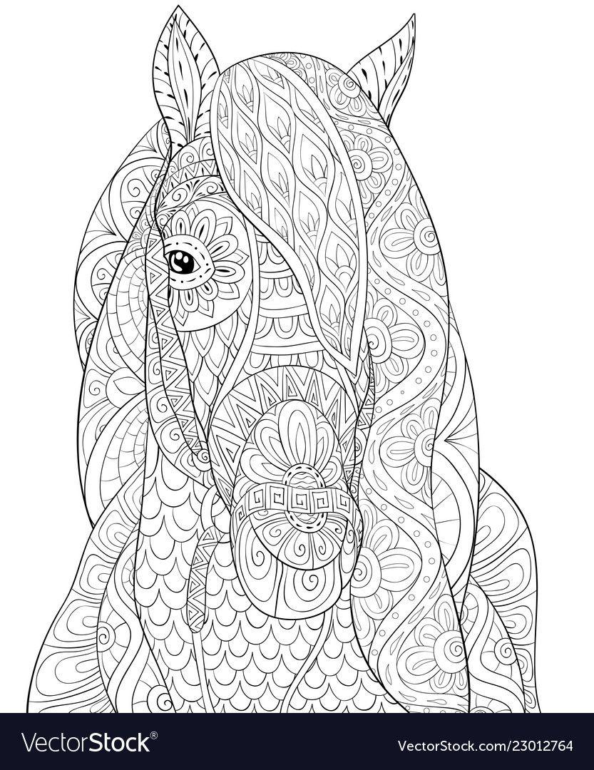 Pin On Horses [ 1080 x 833 Pixel ]