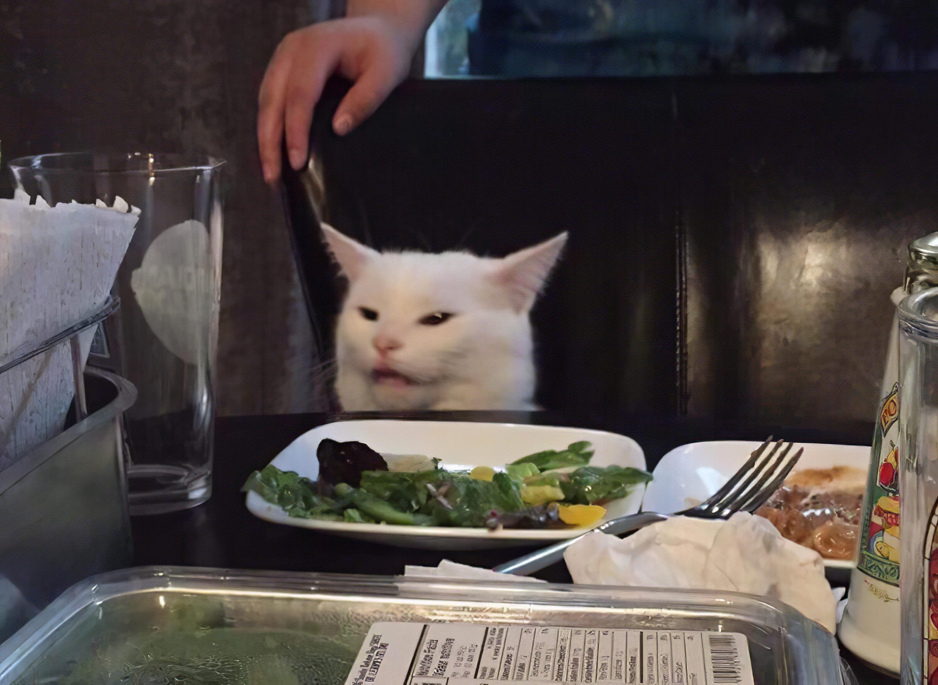 Woman Yelling at a Cat HD meme upscale Cat memes, Cats