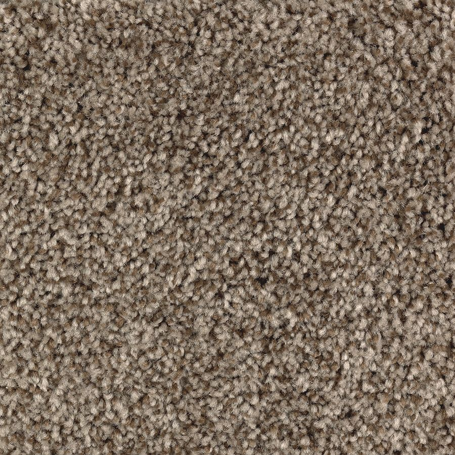 Stainmaster Essentials Tonal Look Cedar Chest Textured Carpet Interior In Brown Stp13 12 L023 In 2020 Buying Carpet Textured Carpet Carpet Samples