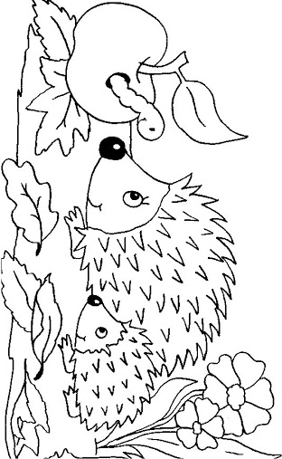 28 Malvorlagen Gratis Tiere Igel Igel Ausmalbild Malvorlagen Herbst Ausmalbilder Herbst