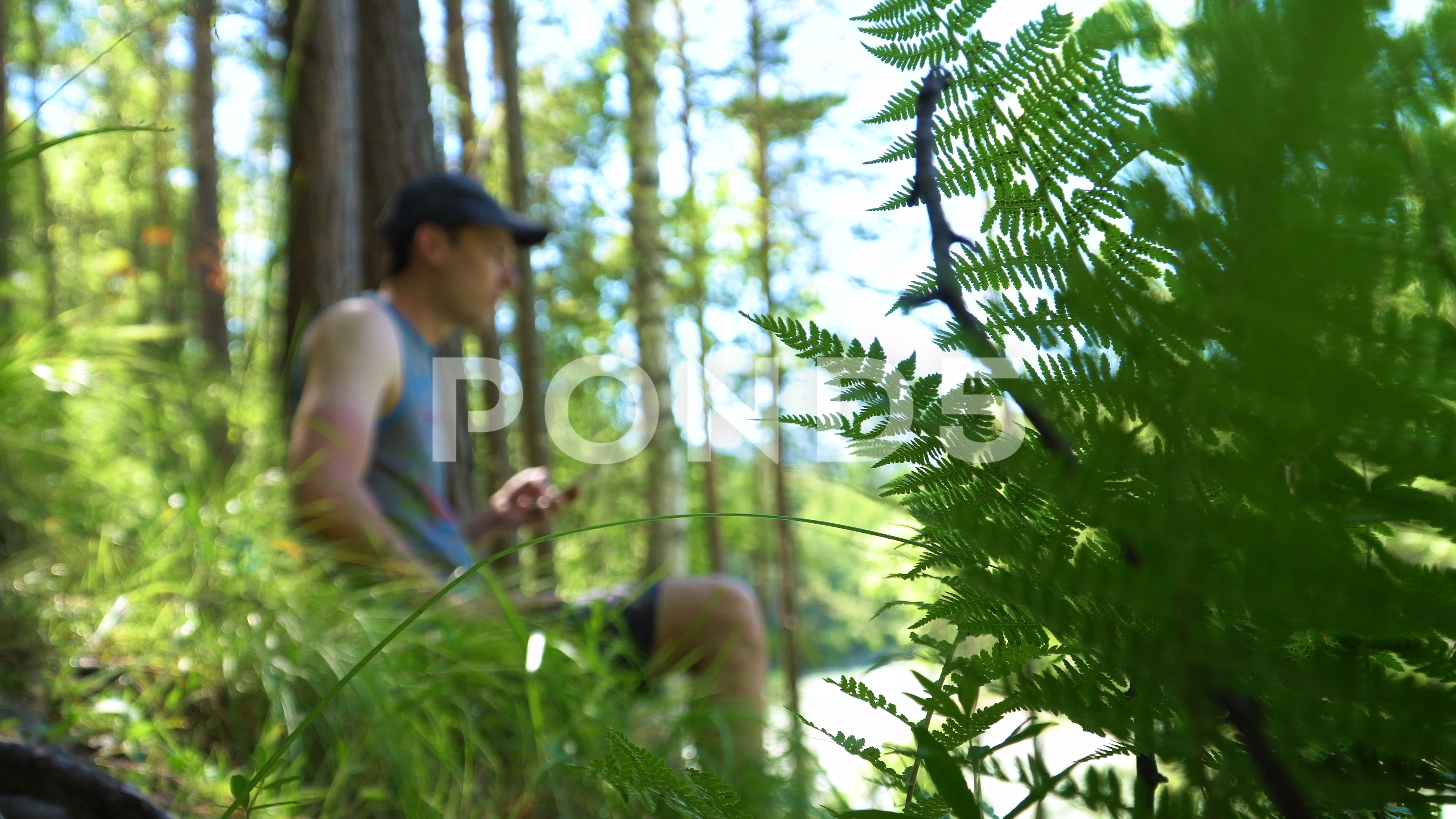 A Tourist Makes A Photo In Nature Stock Footage Ad Photo Tourist Nature Footage How To Take Photos Photo Blurry Pictures