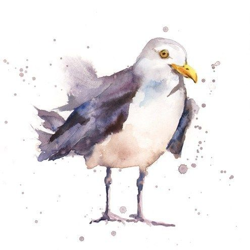 Seagull Art Print 8x10 - Spiffy Shorebird - Folksy