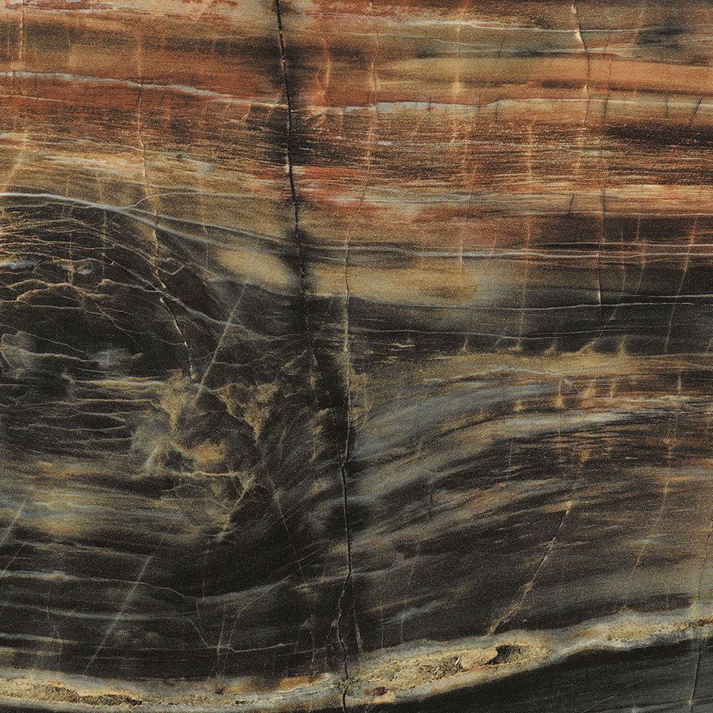 petrified wood from the formica 180fx collection 4x8 laminate sheets in etchings finish. Black Bedroom Furniture Sets. Home Design Ideas