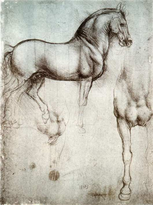 Resultado de imagen de Leonardo Da Vinci caballos