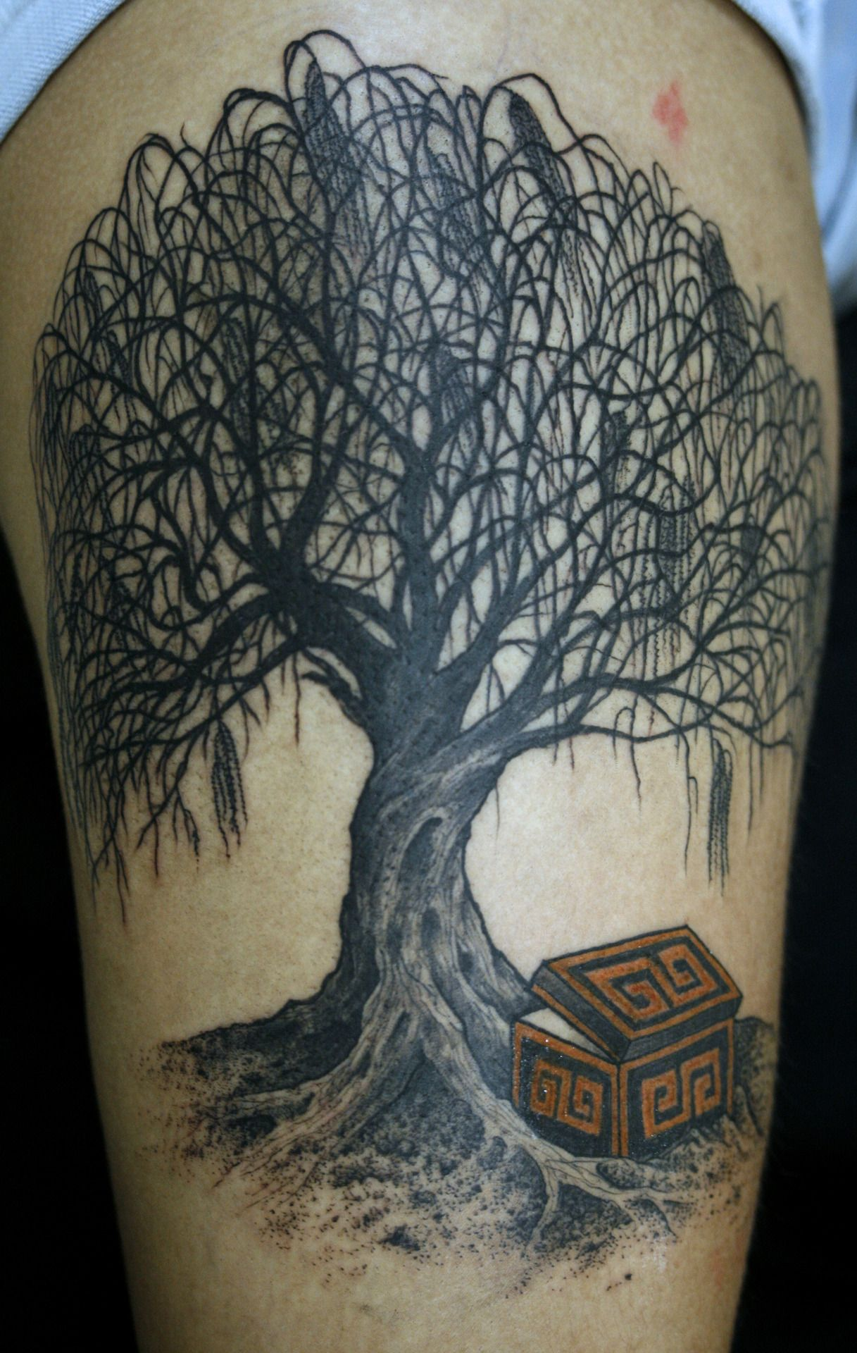 76 tree tattoos ideas to show your love for nature willow tree tattoos tattoo and tatting. Black Bedroom Furniture Sets. Home Design Ideas