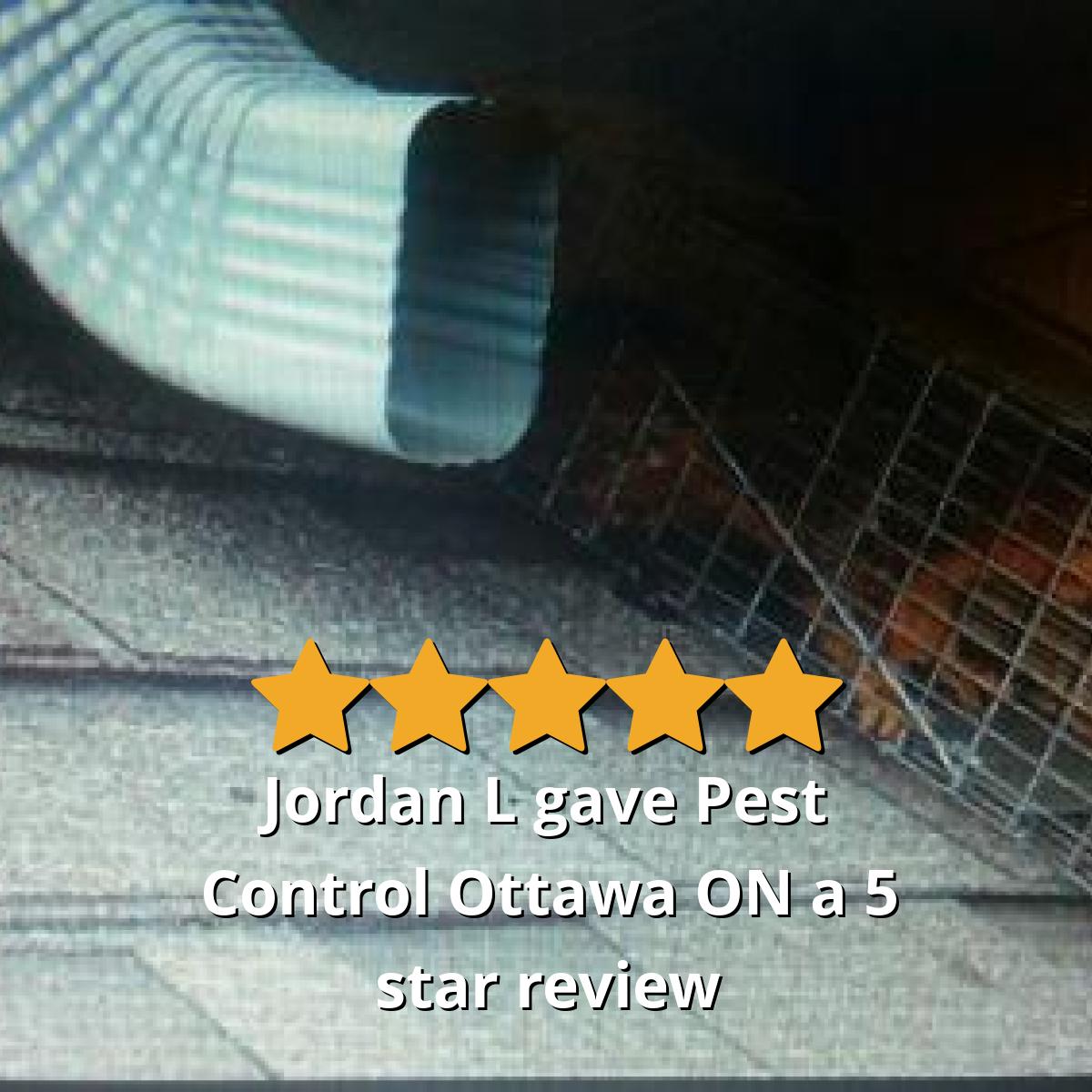 Jordan L gave Pest Control Ottawa ON a 5 star review