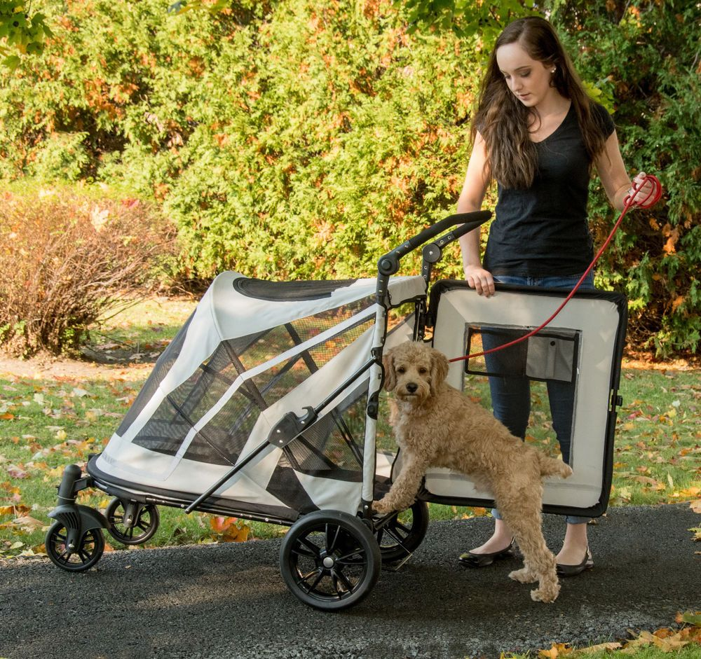 NEW Pet Gear NOZIP Expedition Extra Large Dog Cat