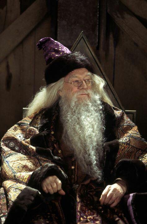 Dumbledor Harry Potter Film Harry Potter Universal Harry Potter Films