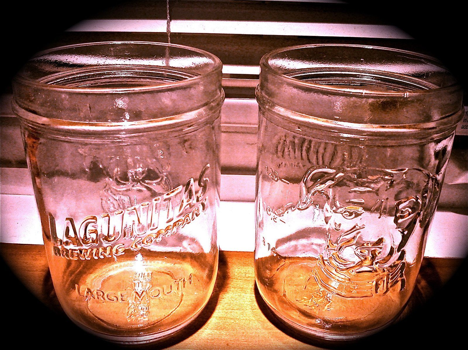 LAGUNITAS BREWING Brewery ~ NEW ~ Embossed DOG ~ Mason Jar Beer Pint Glass Z