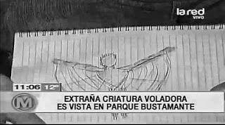 Criatura alada de 2 metros de altura é avistada em Santiago do Chile