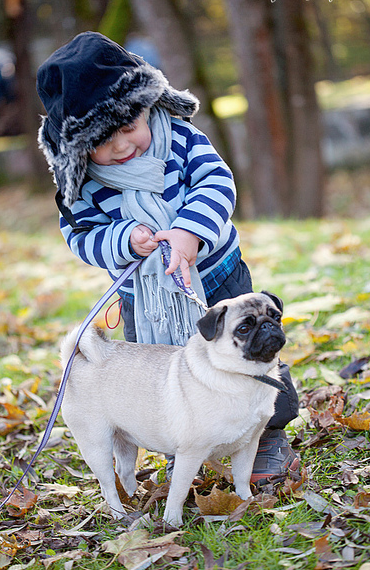 It's never too soon to give a kid a pug/give a pug a kid ...