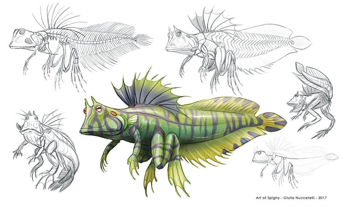 Creature Anatomy lesson2_Fish Amphibian hybrid by Spighy.deviantart ...