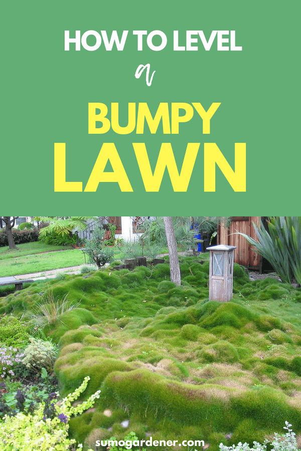 How To Level A Bumpy Lawn Lawn Leveling Lawn Maintenance Lawn