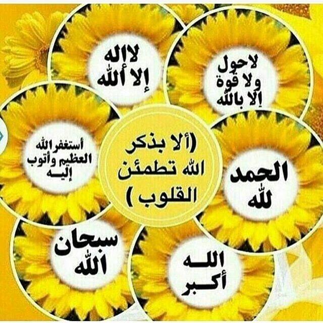 Thepug Alhamdulillah Islam Allah