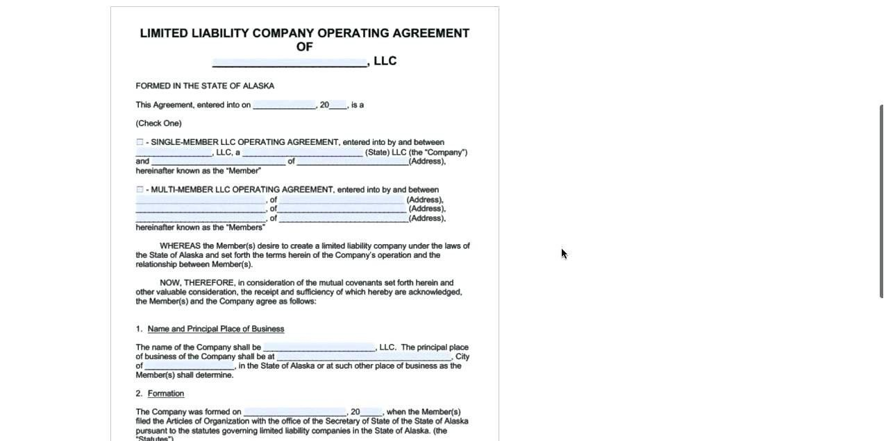 Llc Operating Agreement Template Pdf New The Ten Reasons Tourists Realty Executives Mi Invoice And Templates Contract Template Business Flyer Templates