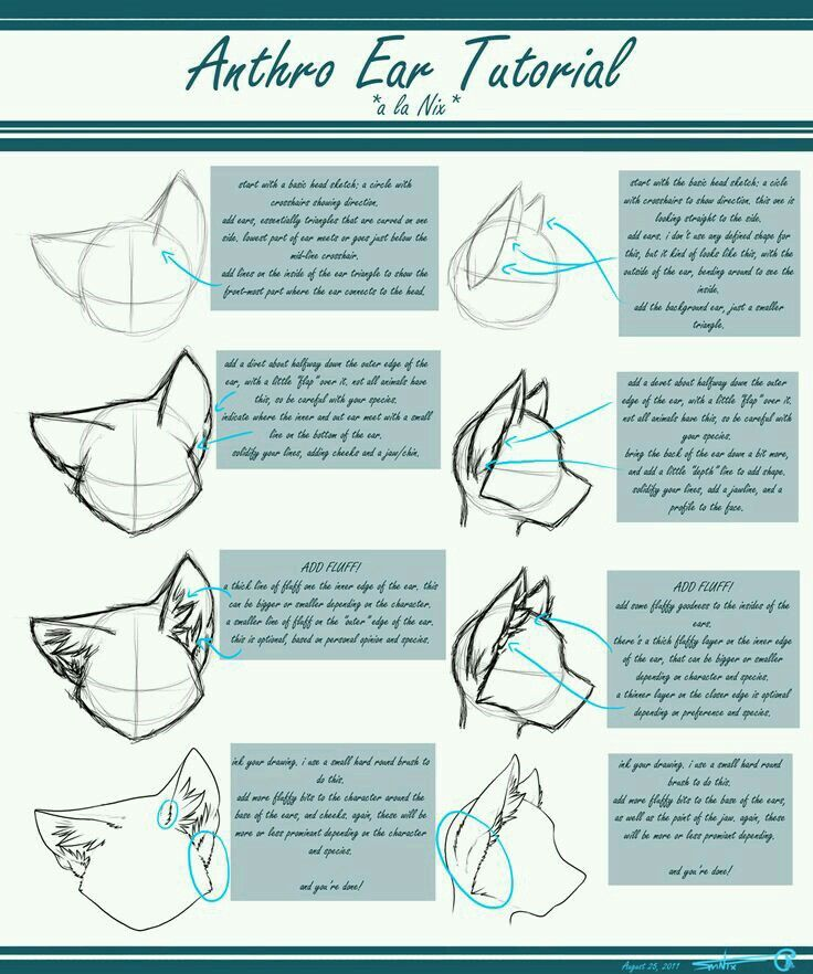 Drawing anthro ears. Drawing tutorials in 2019