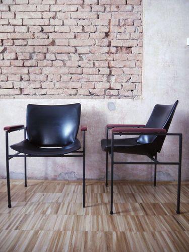 Lupina Chair, Nika kralj