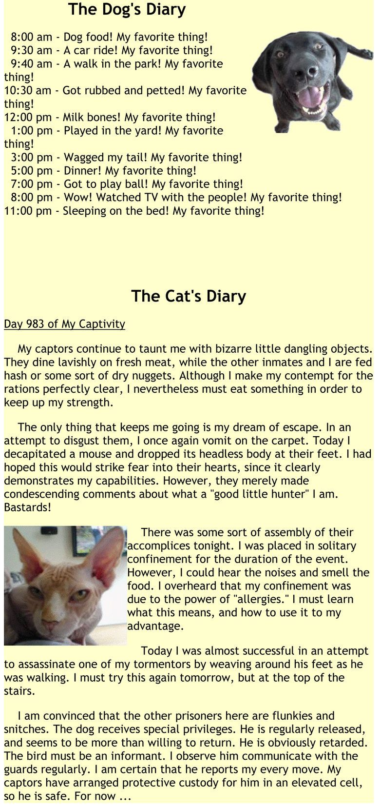 Dogs/Cats diary hilarious! Cat diary, Funny cute, Dog cat