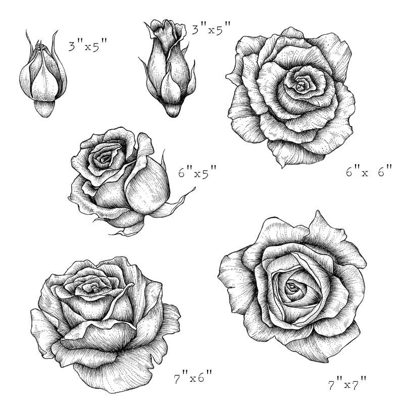 Hand Drawn Rose Clipart Black And White Floral Clipart Wedding Clipart Botanical Line Art Rose Png Digital Download In 2021 Roses Drawing Rose Clipart How To Draw Hands