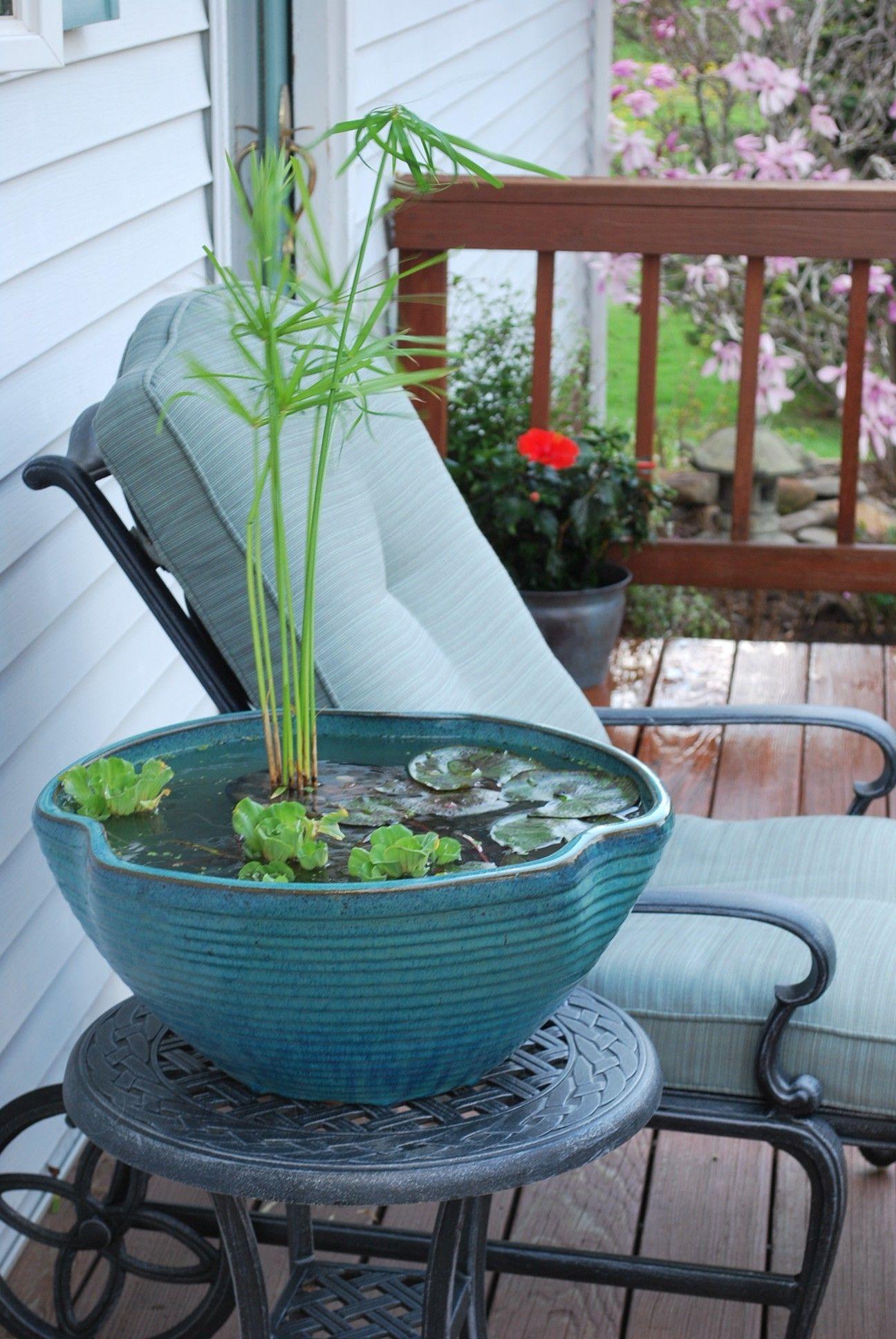 Balkon Ideen selber Machen: Ein Mini-Teich im Topf #balkondeko