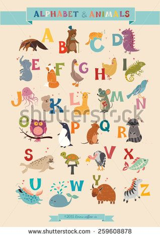 Alphabet Animal Vector Set Illustration Education For Children Preschool Cute Poster Hand Drawn Animal Vector Alphabet Illustration Alphabet B