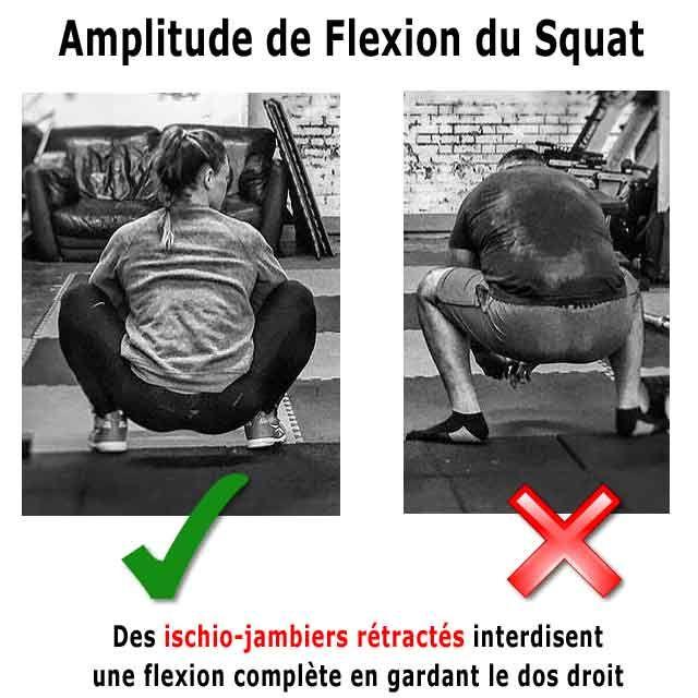 des ischio jambiers raides empechent la flexion maximale en squat ... 75dac5cb2d4