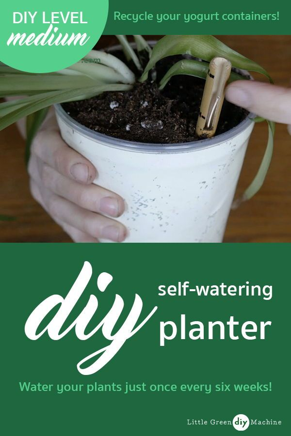 DIY Self-Watering Planter From Yogurt Containers?   Upcycling ... on