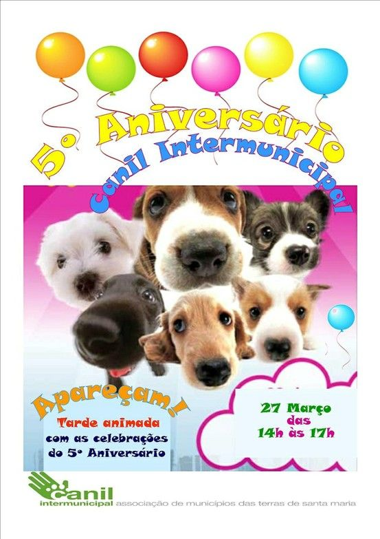 5.º Aniversário Canil Intermunicipal > 27 Março 2013 - 14h00 @ Canil Intermunicipal, Ossela, Oliveira de Azeméis
