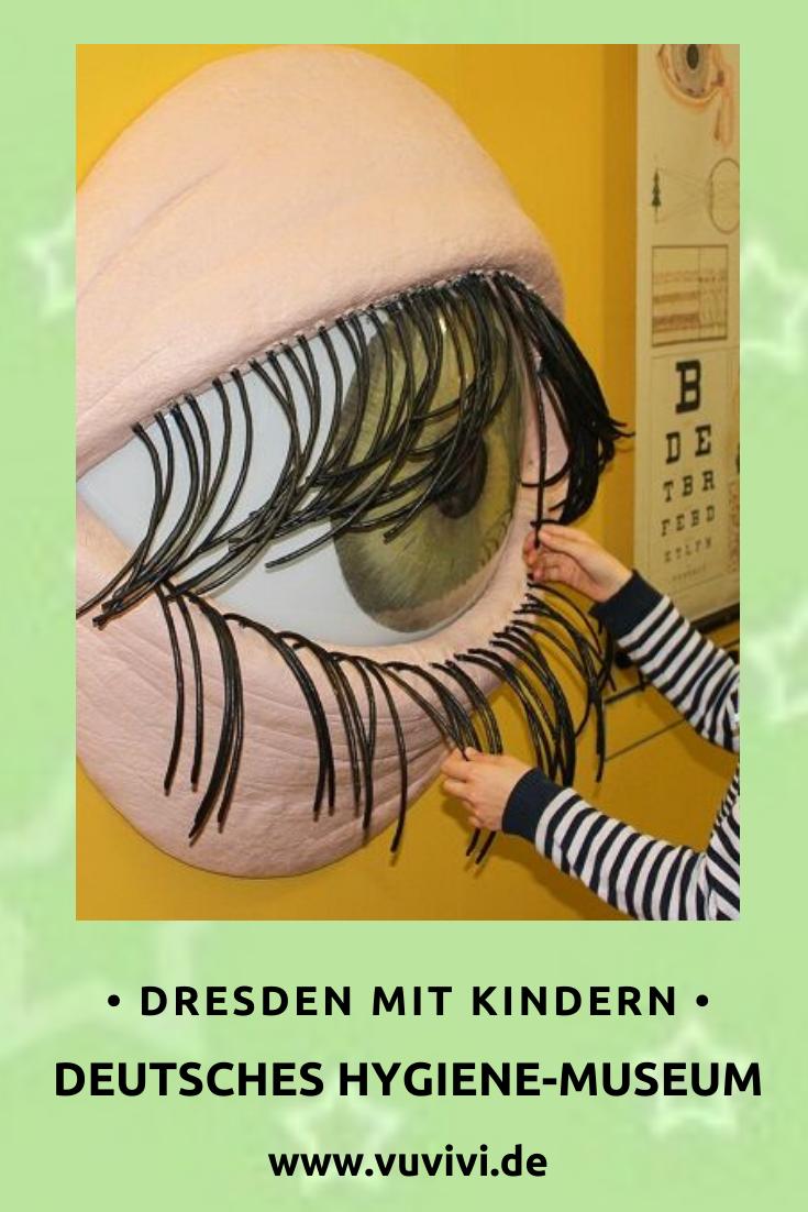 Deutsches Hygiene Museum Ausflug Dresden Ausfluge Mit Kindern