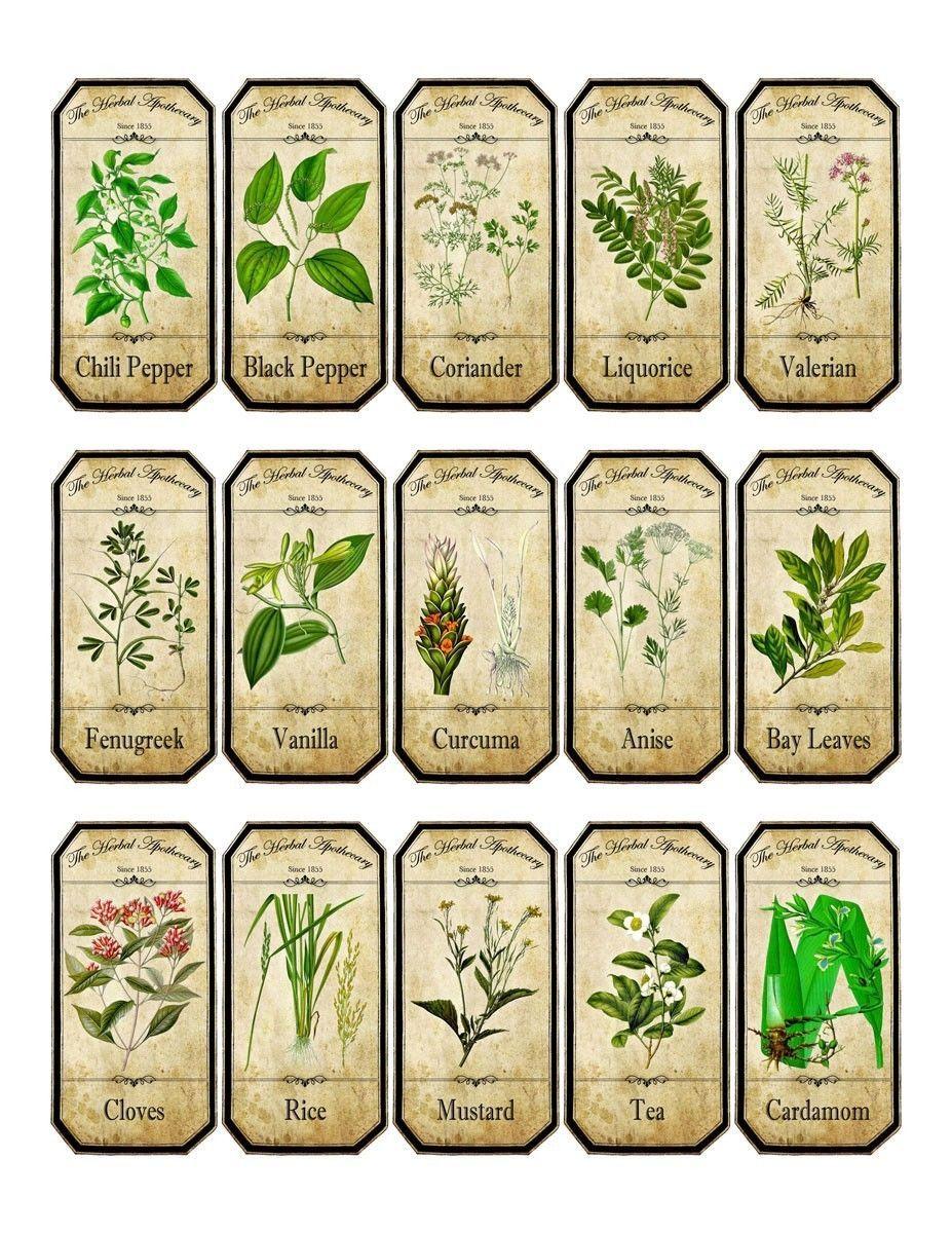 Vintage Inspired Assorted Herb Spice Food Tea Bottle Jar Labels Stickers Jar Labels Stickers Herb Labels Jar Labels