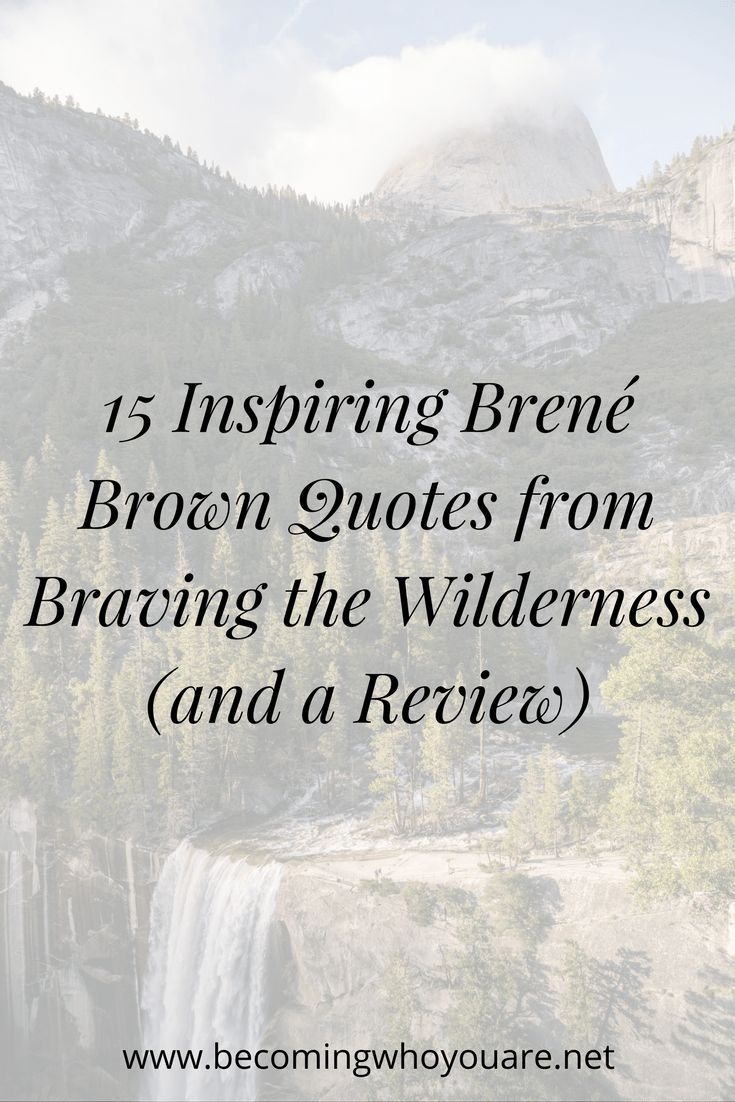 Click to read a review of Braving the Wilderness and
