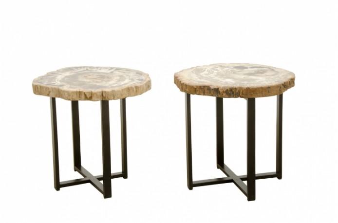 Table Basse Ou Table D Appoint En Bois Petrifie Litteralement Bois Transforme En Pierre Qui Est Un Type De Fossile Table D Appoint En Bois Table Basse Bois Petrifie