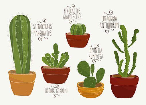 Ilustração Cactos Todos. Arquivo Pdf. by Brotos on Etsy
