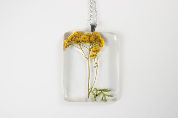 Tansy Tanacetum vulgare Botanical Jewelry  by MossoftheWoods