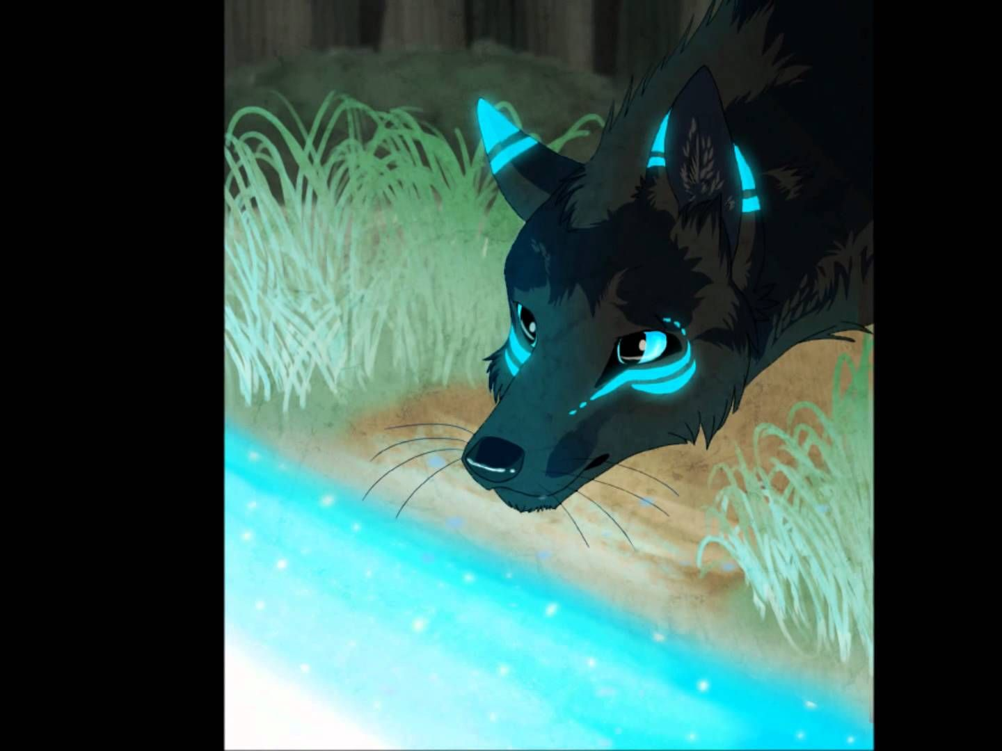 For The Public Who Love Anime Wolves And Song A Thousand Years