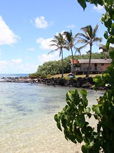the cottages at kaneohe bay marine corps community services hawaii rh pinterest com the cabanas at kaneohe bay pictures the cottages at kaneohe bay marine corps