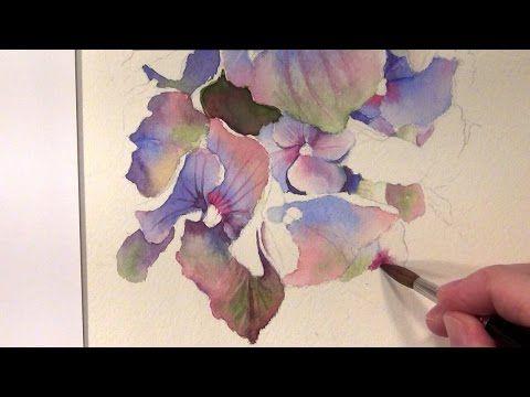 How to paint hydrangeas in watercolor - Online Tutorial and Watercolor DVD - YouTube http://www.SeedingAbundance.com http://www.marjanb.myShaklee.com