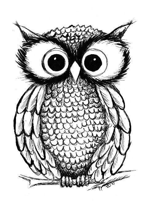 Cute Love The Big Eyes Owls Drawing Owl Illustration Drawings