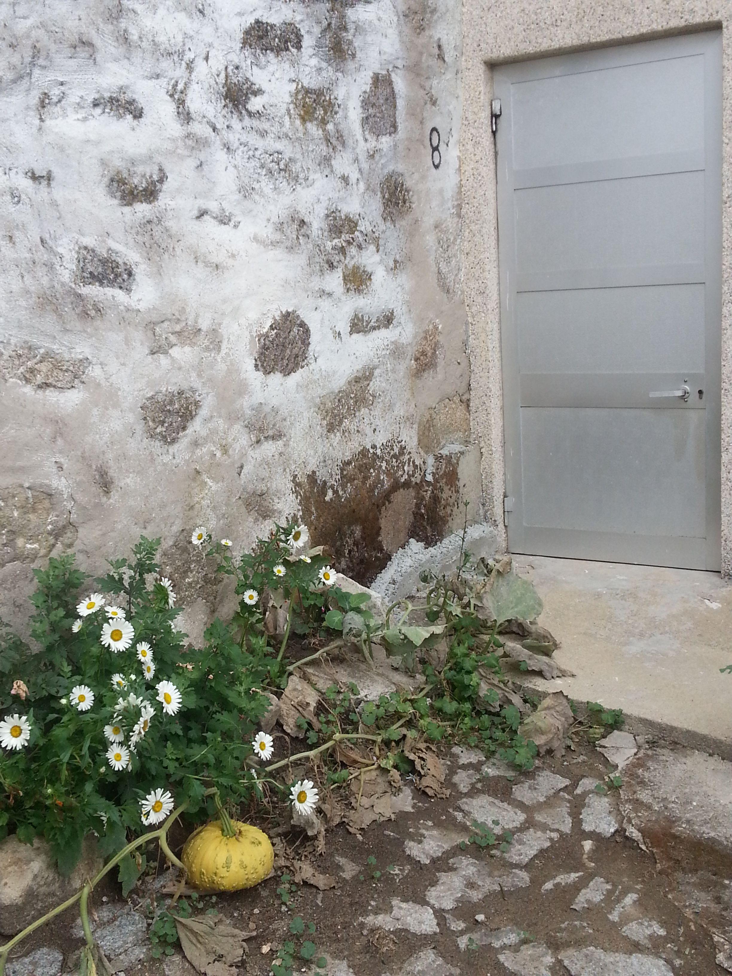 Le potiron devant la porte moderne. Gralhas (près de Montalegre). Nord du Portugal 2013